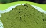 Katuk Leaf Powder 50 gr