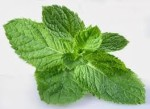 Mint ( daun ) serbuk / Mint Leaf Powder 50g
